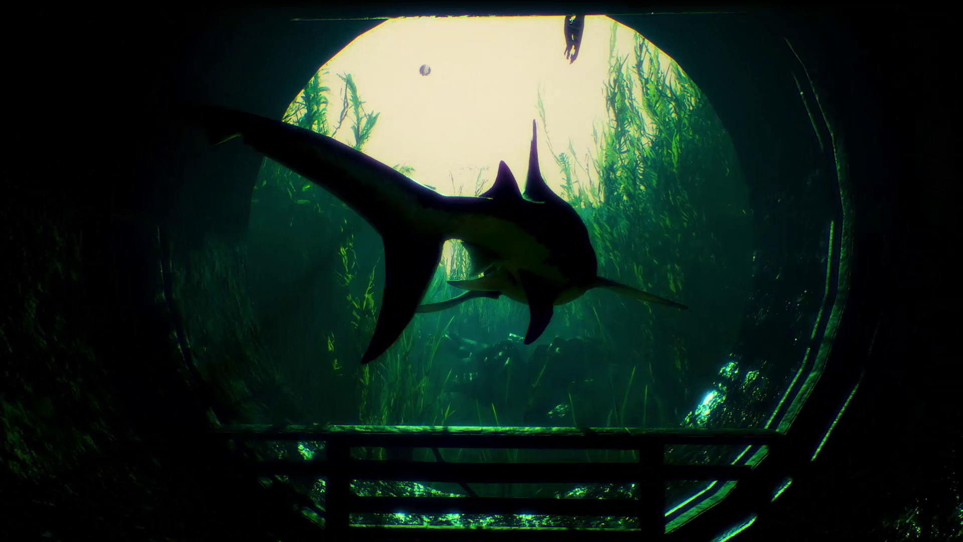 The protagonist of maneater, a medium sized shark, swims out of a sewer tunnel.