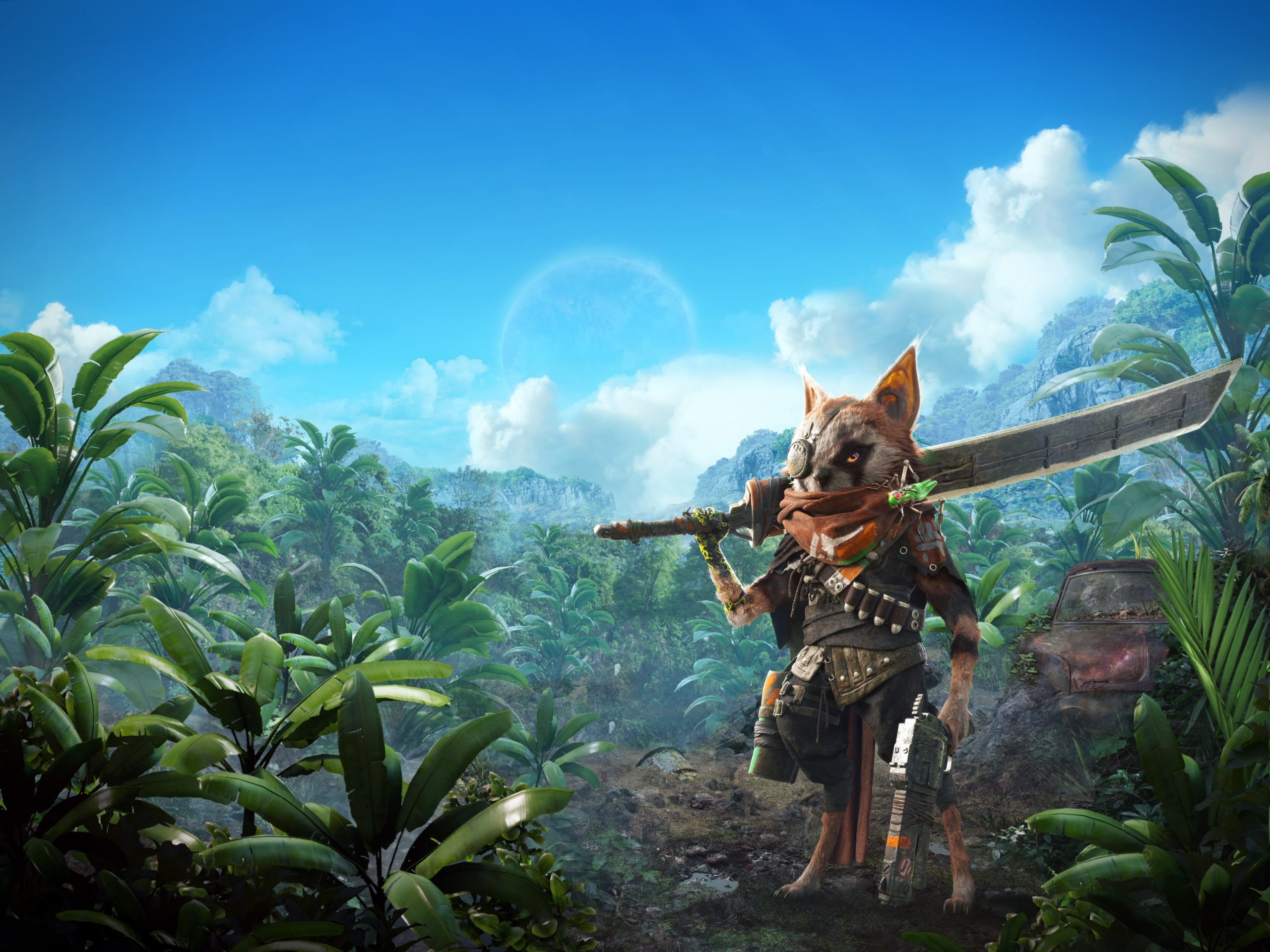 Biomutant artwork of a rogue-ish raccoon holding a sword and handgun, standing amongst a jungle of trees.