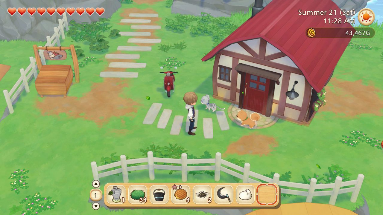 Screenshot from Story of Seasons Pioneers Of Olive Town