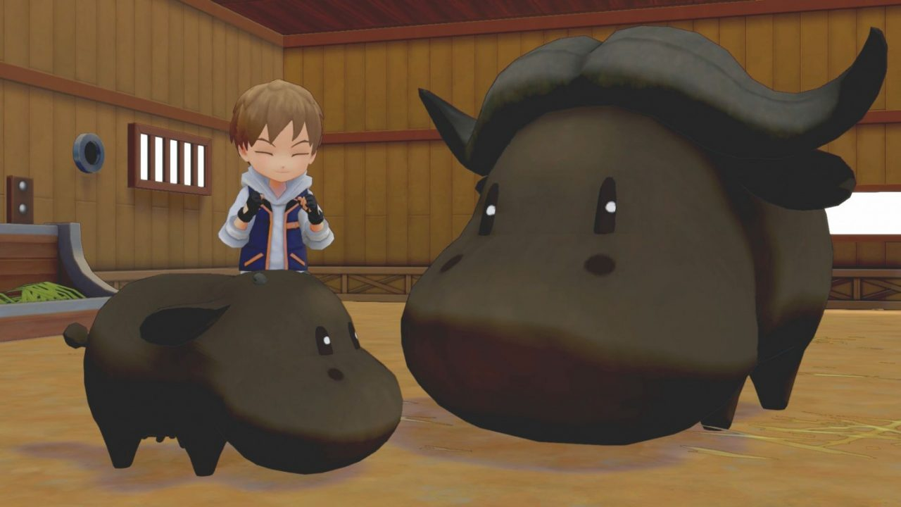 How to make friends and influence cattle in Story of Seasons: Pioneers of Olive Town